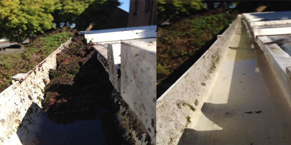 Professional Gutter Cleaning Salisbury